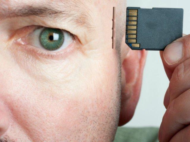 оперативная память человека