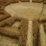 круги на полях