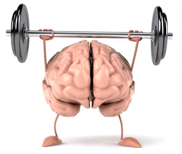 заставить мозг работать